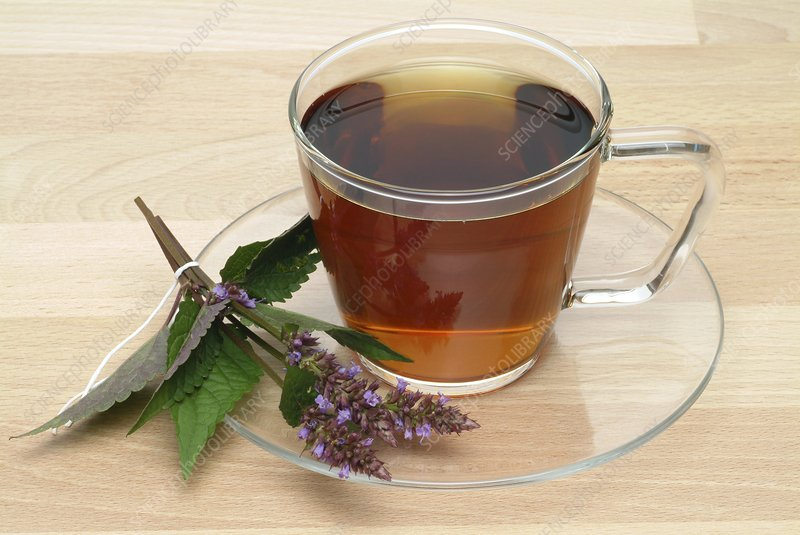 Mint hyssop herbal tea