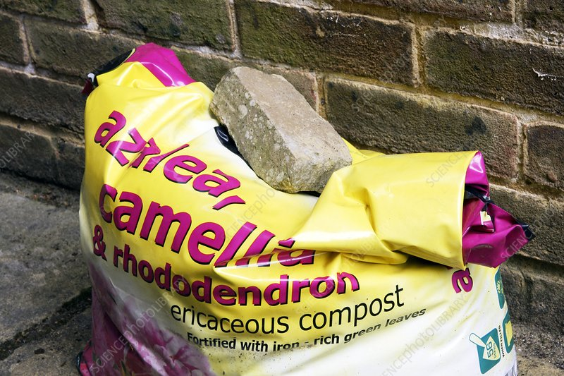 Compost for planting a rhododendron
