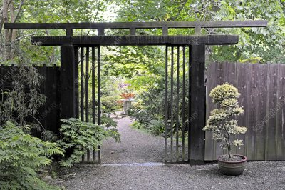 Japanese garden, Cornwall