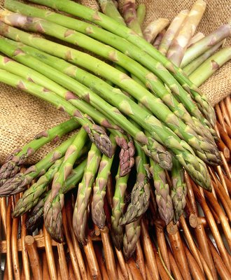 Asparagus spears (Asparagus officinalis)
