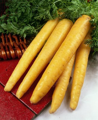 Carrots (Daucus 'Yellowstone')