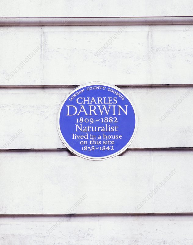 Charles Darwin commemorative plaque