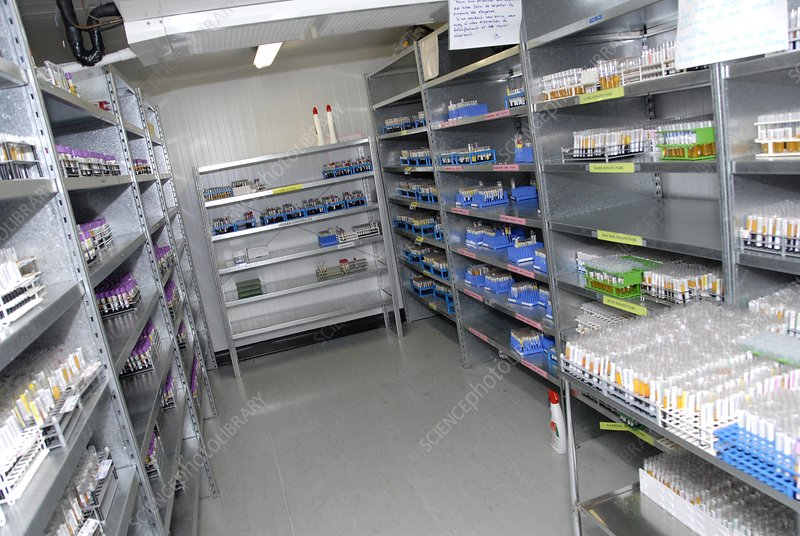 Blood sample storage room