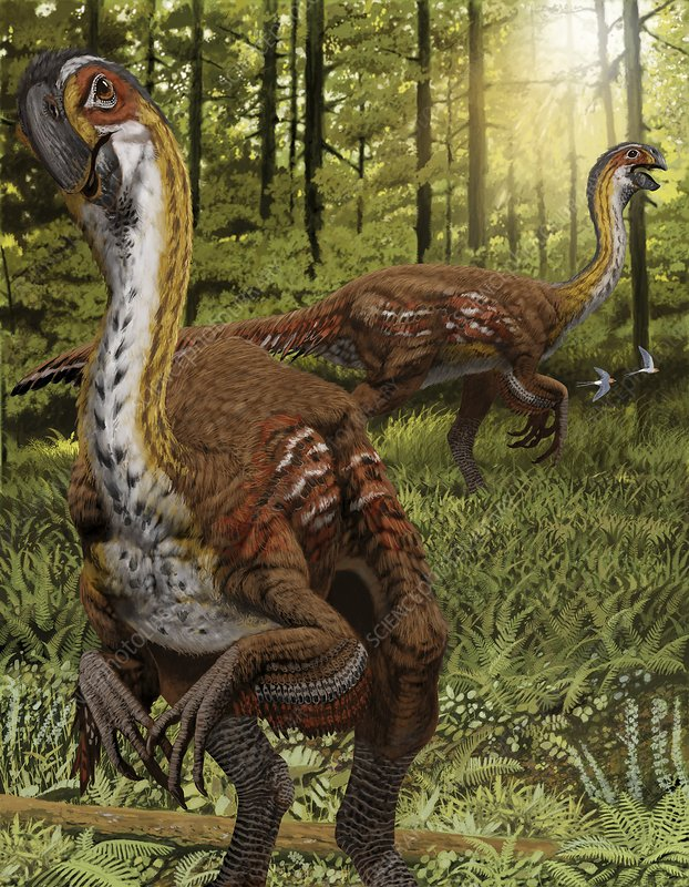 Gigantoraptor, artwork