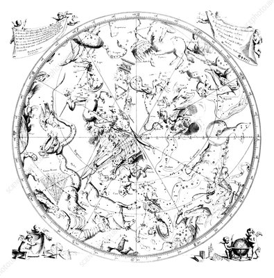 Southern constellations 1690 artwork