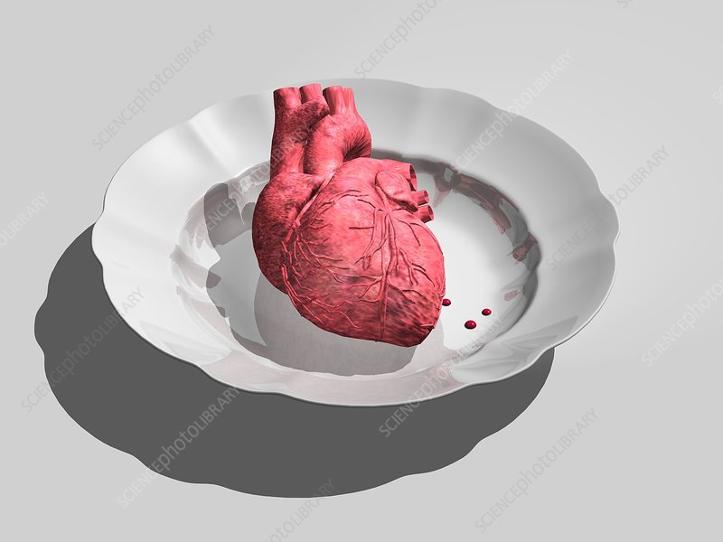 Donor heart, conceptual artwork