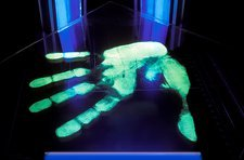 Ultraviolet light detection of handprint