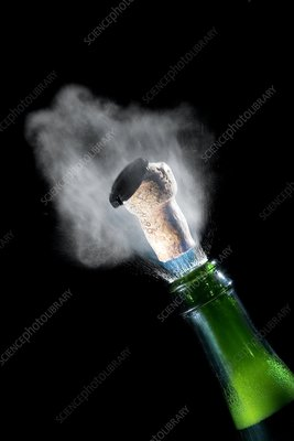 Champagne cork popping, high-speed image