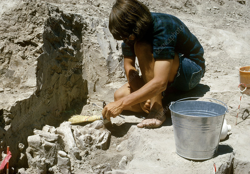 Paleo-Indian Excavation