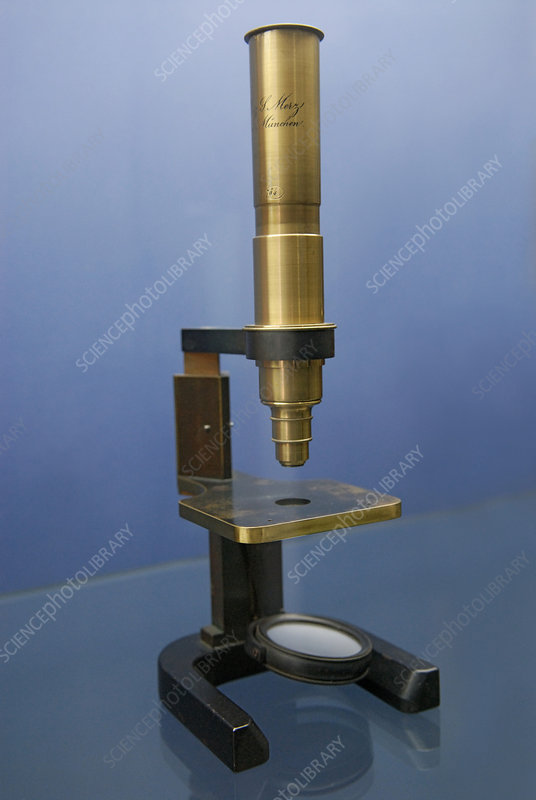 Early Compound Microscope