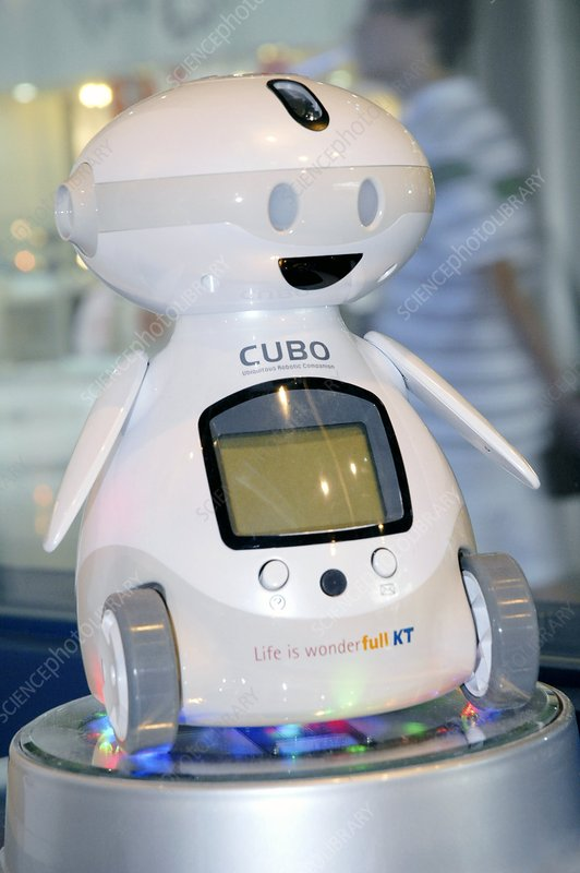 Cubo domestic robot
