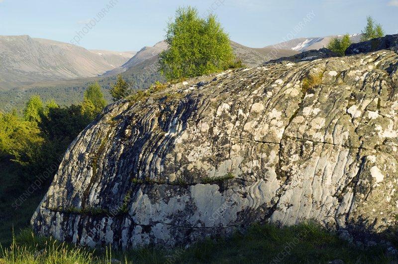 Eroded granite, Scotland