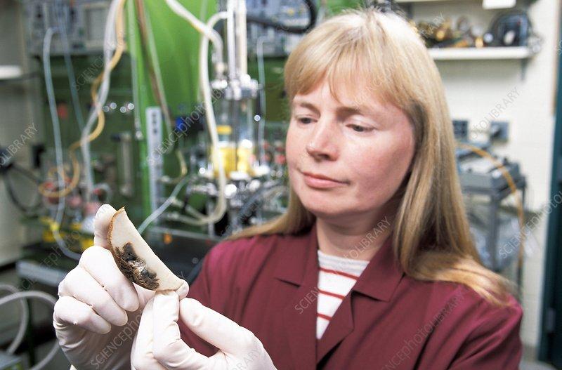 Plant pest research