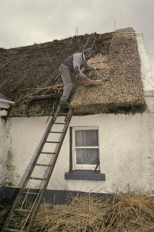 Thatching Roof