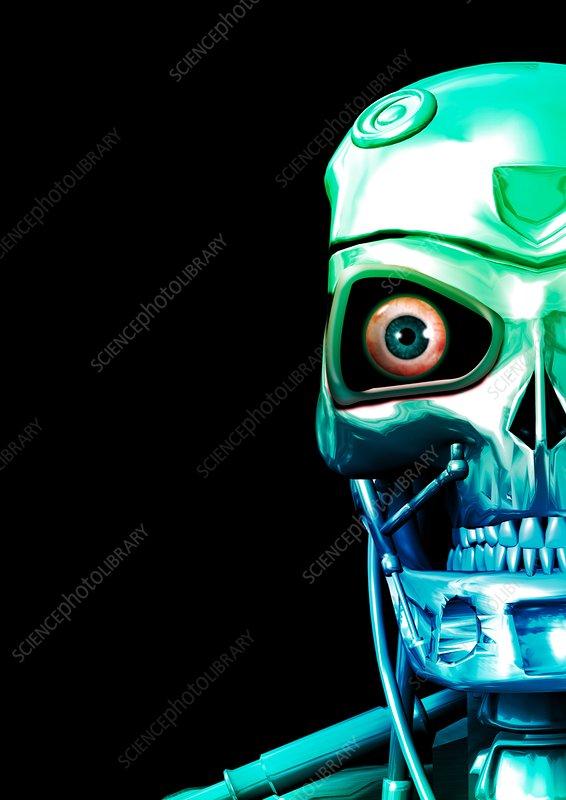 Humanoid robot, artwork