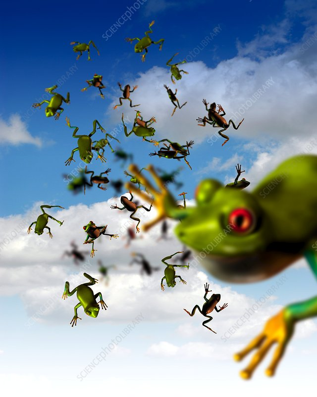 Raining frogs, artwork