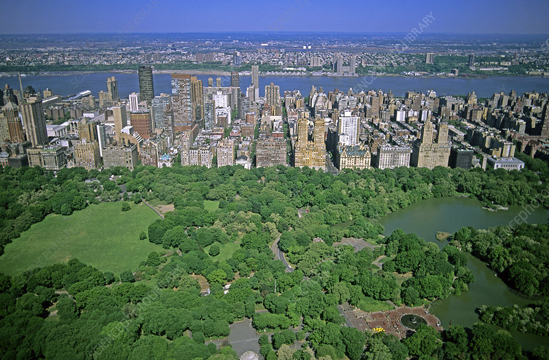 'Central Park, New York City'