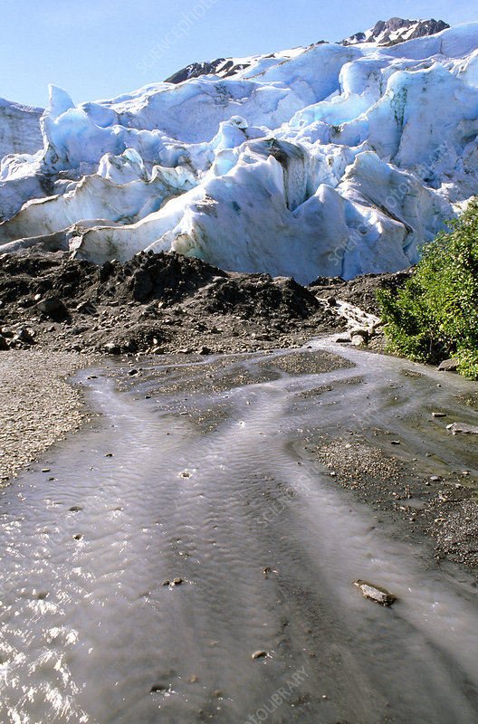 'Toe of Exit Glacier, Alaska'