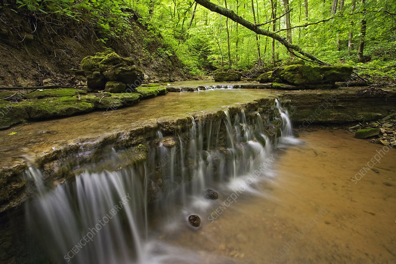 'Waterfall, Kentucky'