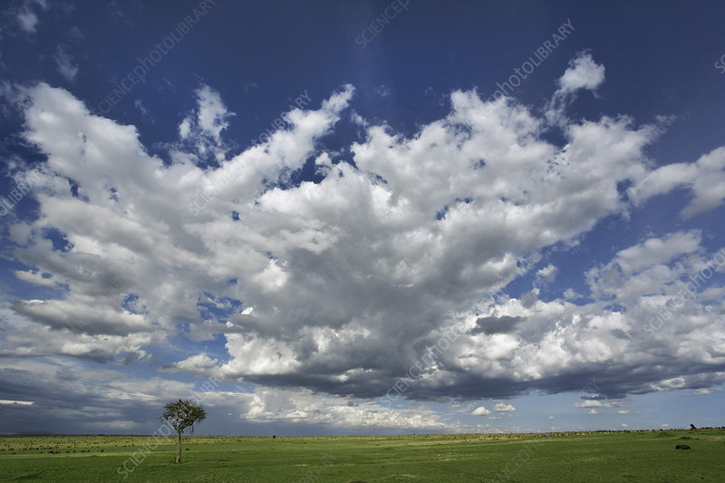 Clouds Over Grassy Plains