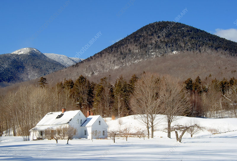 'Winter, Wonalancet, NH'