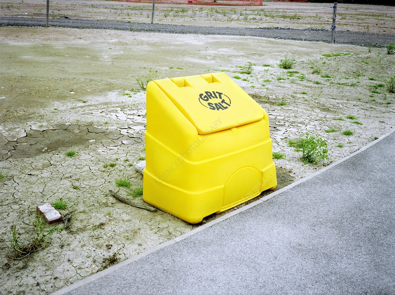 Roadside salt container