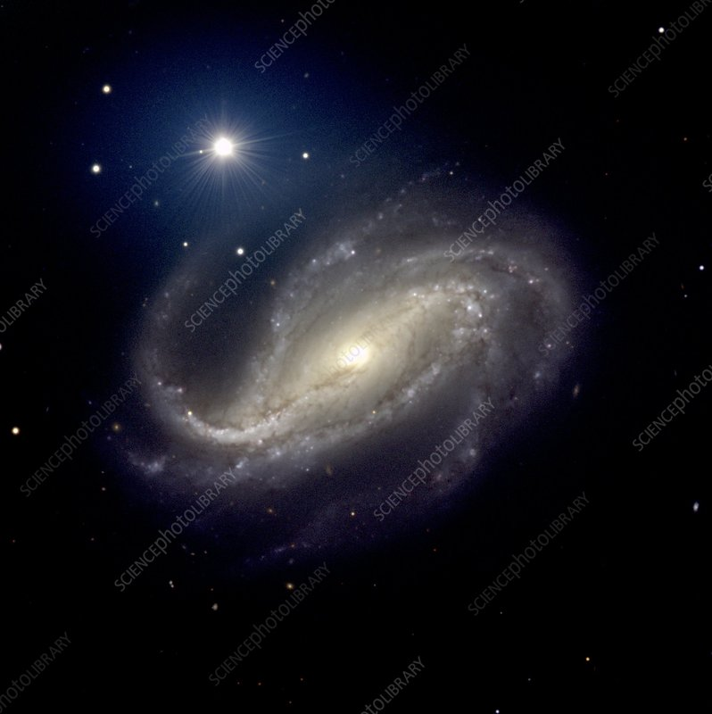 Barred spiral galaxy NGC 613