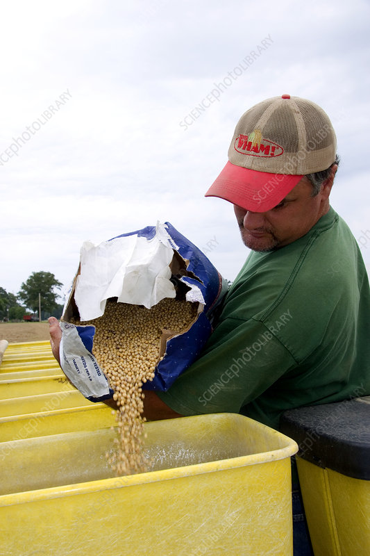 Farmer Loading Planter with Soy Bean Seed