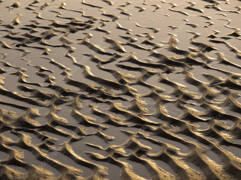 Rippled sand in regular pattern