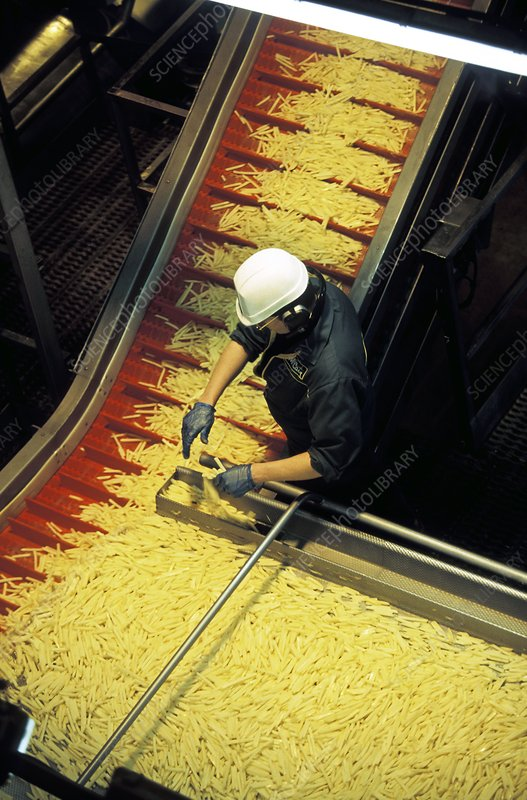 Frozen chip factory, raw chips