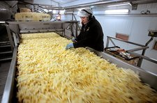 Frozen chip factory, fried chips