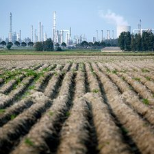 Agriculture next to a chemical plant