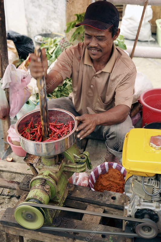 man grinding red chilies into powder