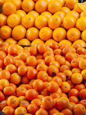 Clementines and oranges in market