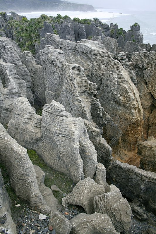The Pancake Rocks of Punakaiki