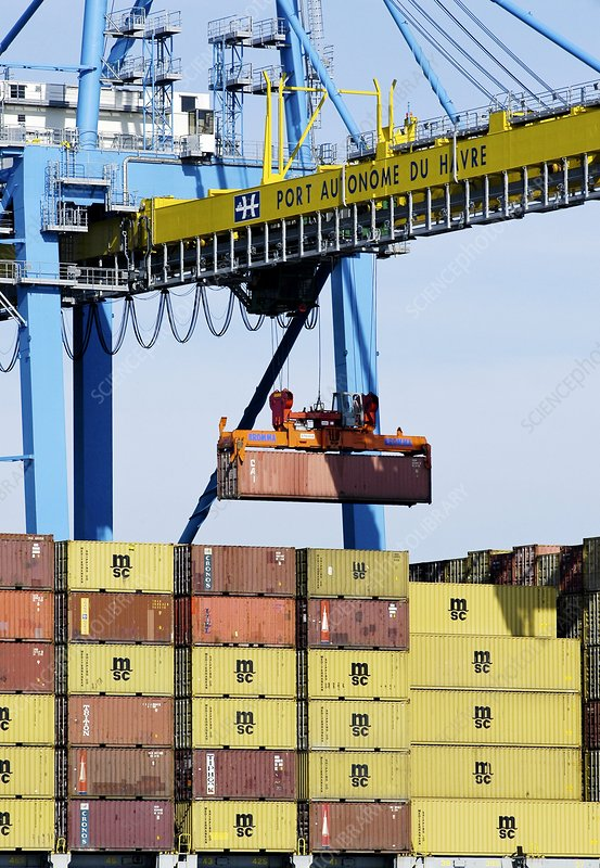 Shipping cranes moving cargo