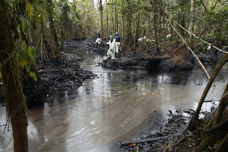 Oil spill damage control in a rainforest