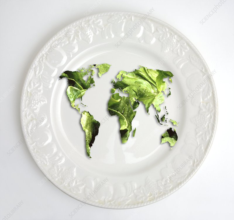 Lettuce map of the world