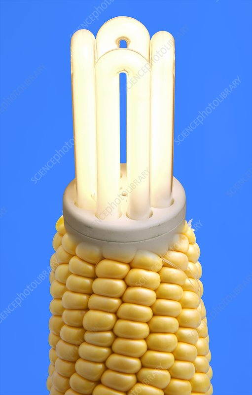 Biofuel light bulb, comcept