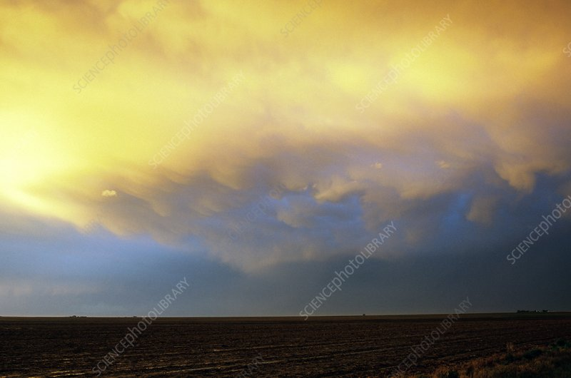 Sunlit storm clouds over fields