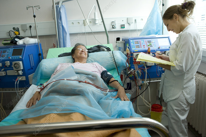 essays on hemodialysis Brigham young university dialysis case study a group project involving researching dialysis, preparing a power point presentation used when teaching the class a full hour and a half lesson on.
