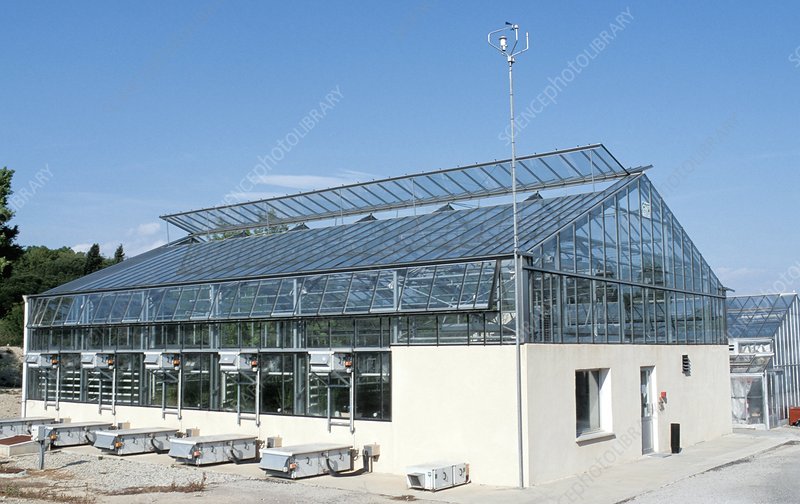 Agricultural research greenhouse