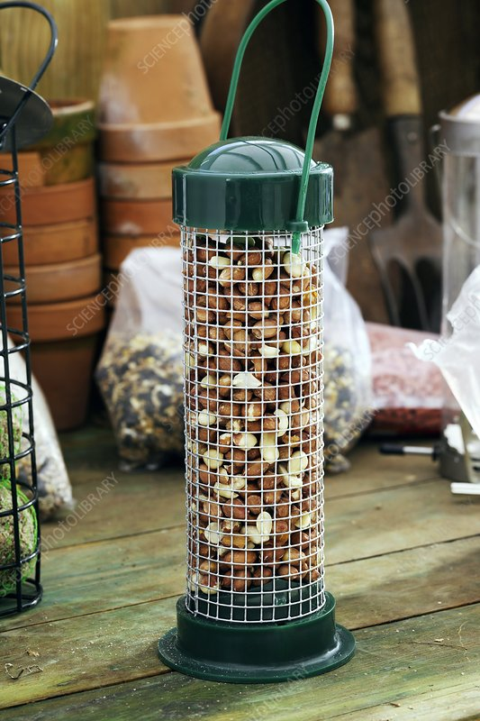 Peanut bird feeder