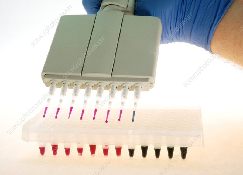 Multi-pipette filling a multi-well tray