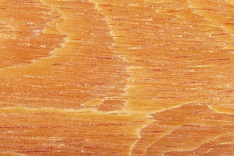 Bocoa prouacensis wood