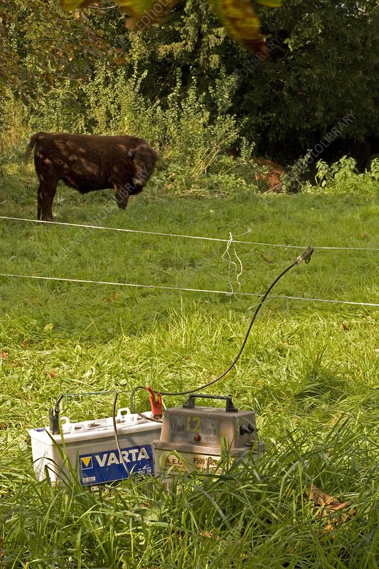 Agricultural electric fence