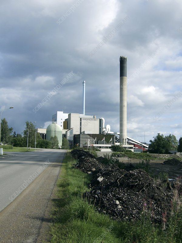 Biomass heating and power plant