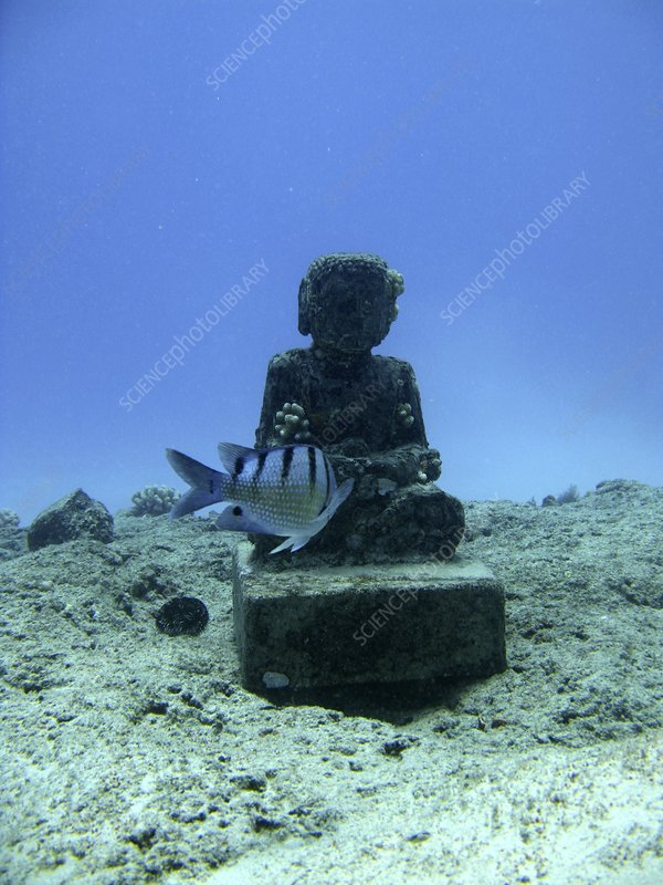 Sunken statue, Hawaii
