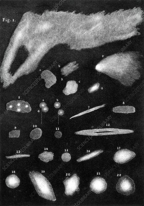 Nebulae drawn by William Herschel, 1811