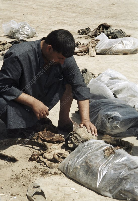 Human remains at a mass grave, Iraq, 2003